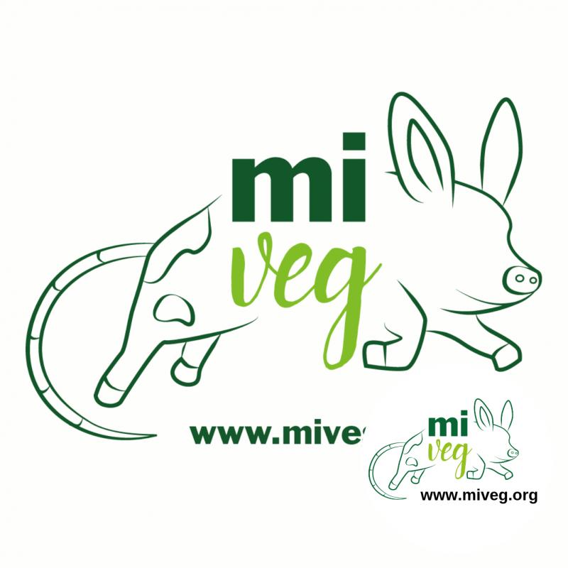 MIVEG 19-20 OTTOBRE 2019